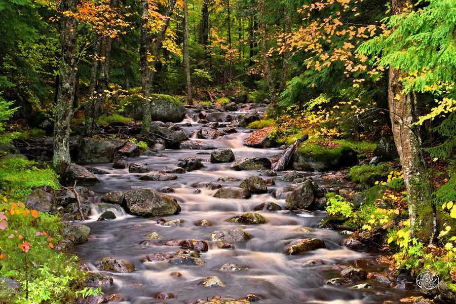 Mystical Mountain Stream Photograph