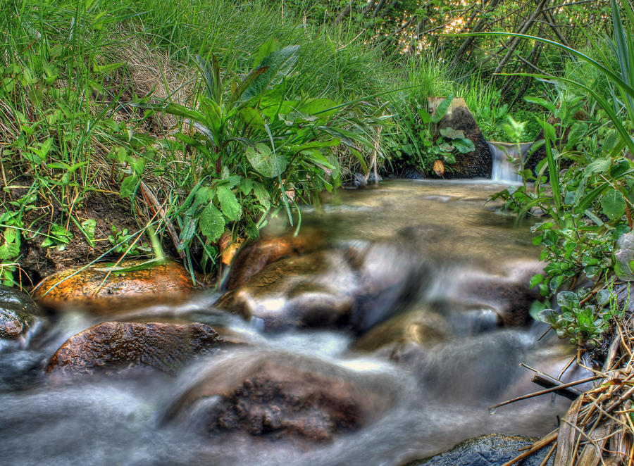 Mystical Stream Photo Photograph 