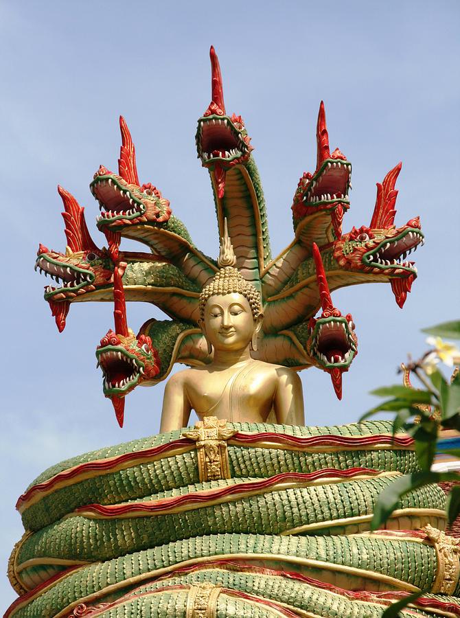 Naga Photograph