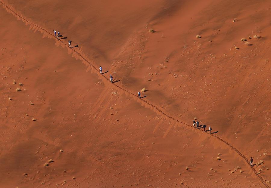 Namibia Photograph - Namibia Dune Hoppers by Nina Papiorek