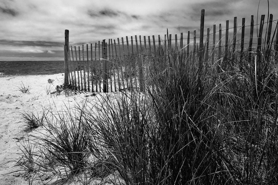 Nantucket Harbor Beach Dunes  Photograph