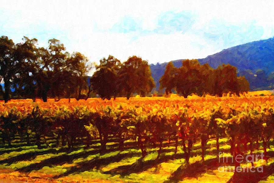 Landscape Photograph - Napa Valley Vineyard In Autumn Colors 2 by Wingsdomain Art and Photography