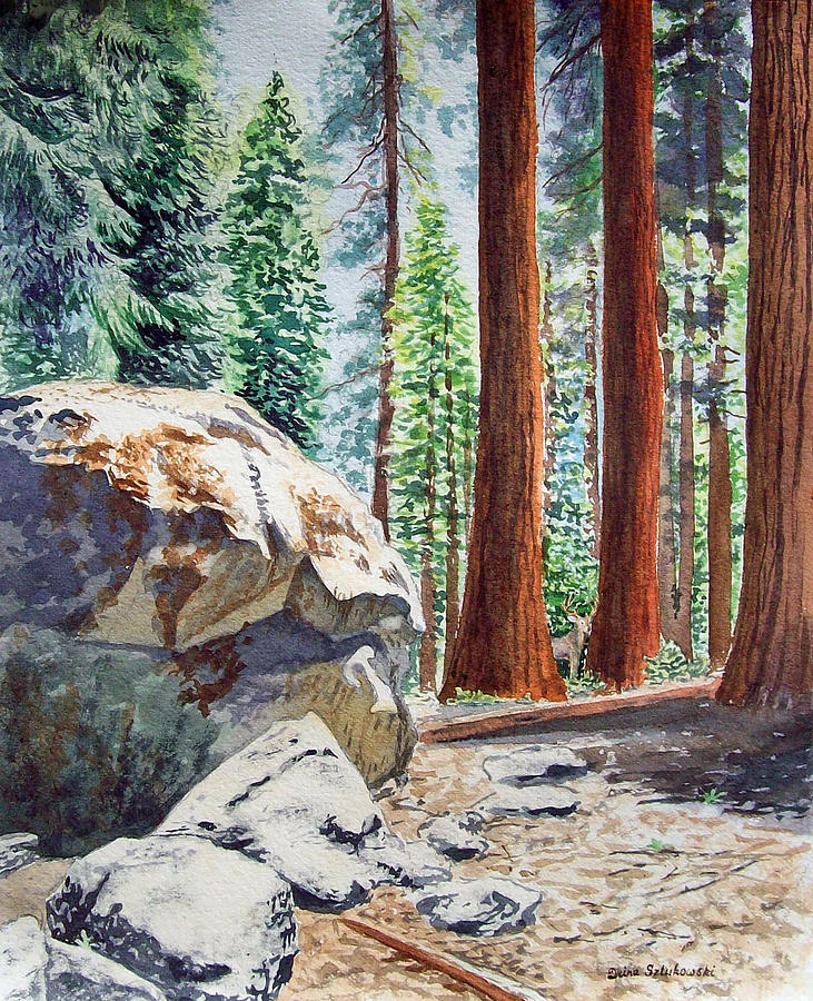 National Park Sequoia Painting  - National Park Sequoia Fine Art Print