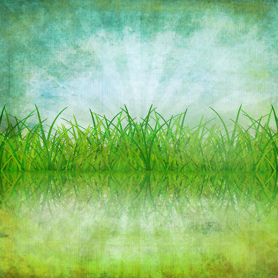 Nature And Grass On Paper Photograph