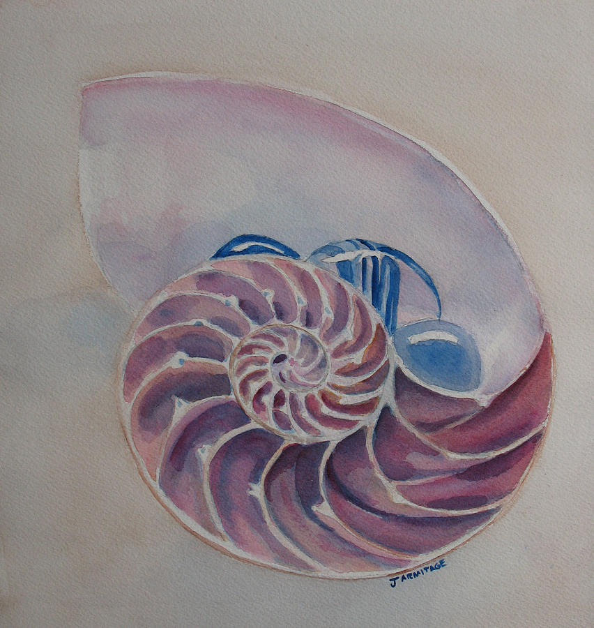 Nautilus With Glass Stones Painting  - Nautilus With Glass Stones Fine Art Print