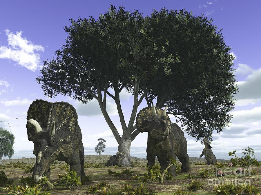 Nedoceratops Graze Beneath A Giant Oak Digital Art