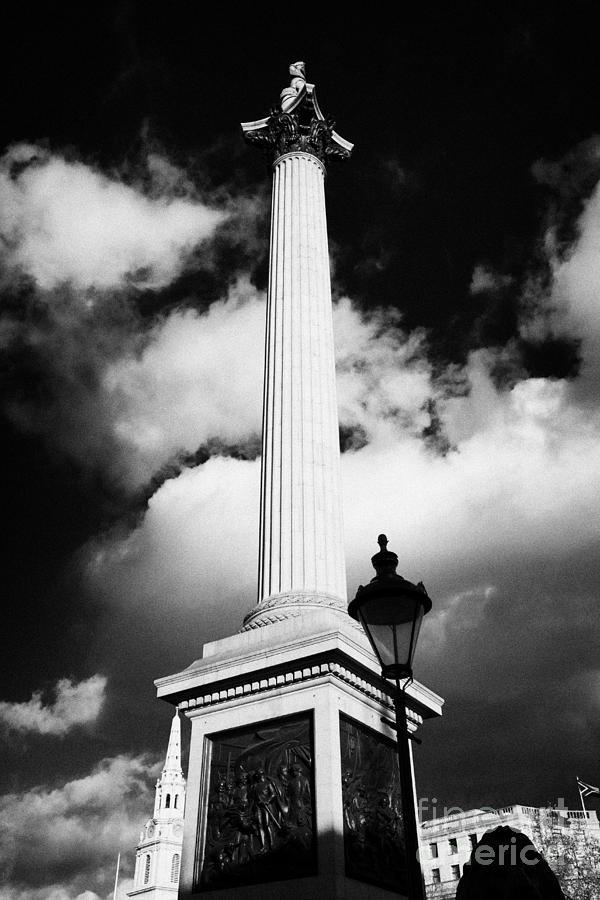 nelsons column in Trafalgar Square London England UK United kingdom Photograph