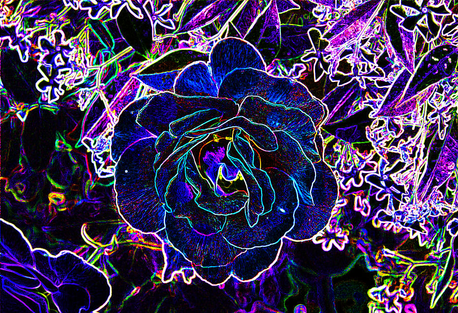 Neon Rose Digital Art  - Neon Rose Fine Art Print