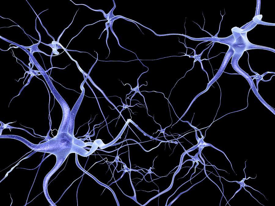 Neural Network Art