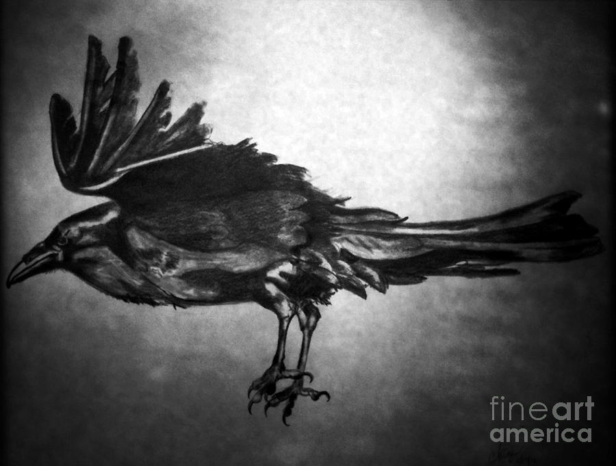 Nevermore. Drawing  - Nevermore. Fine Art Print