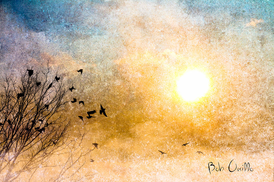 New Day Yesterday Photograph  - New Day Yesterday Fine Art Print