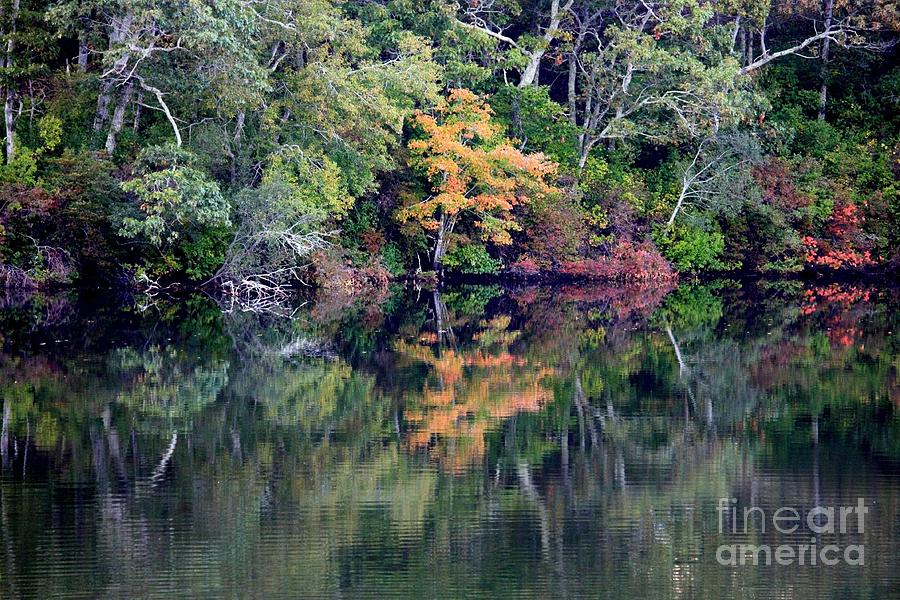 Fall Foliage Photograph - New England Fall Reflection by Carol Groenen