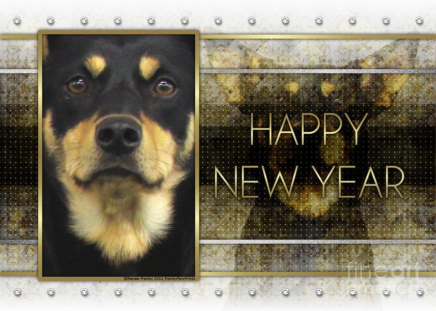 New Year - Golden Elegance Australian Kelpie Digital Art