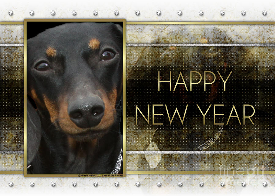 New Year - Golden Elegance Dachshund Digital Art