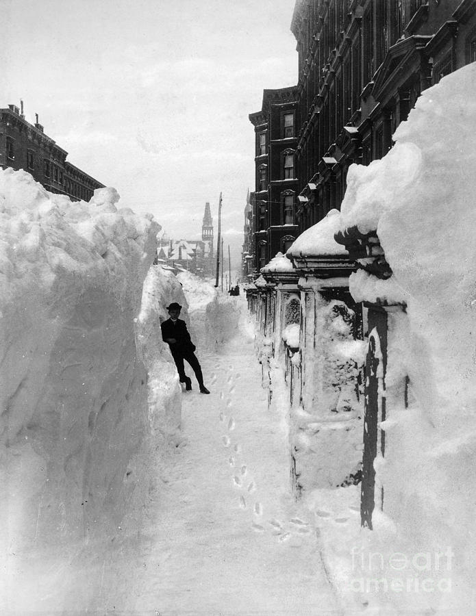 New York: Blizzard Of 1888 Photograph  - New York: Blizzard Of 1888 Fine Art Print