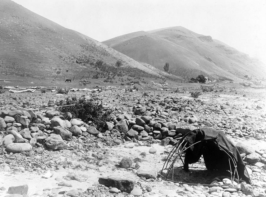 1910s Photograph - Nez Percé Sweat-lodge. Edward S. Curtis by Everett