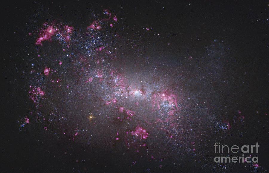 Ngc 4449, An Irregular Galaxy Photograph by Robert Gendler
