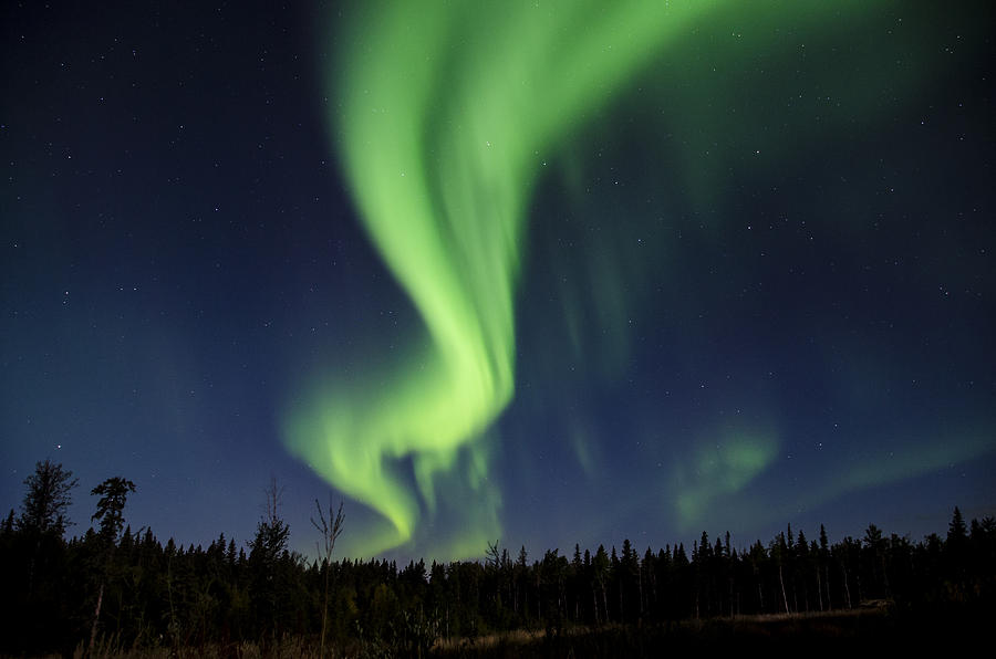 Auroras Photograph - Night Lights by Steve  Milner