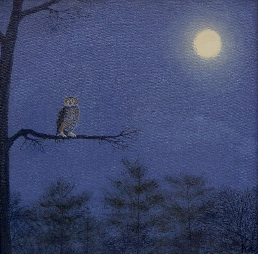 Night owl by phyllis andrews for Night owl paint color