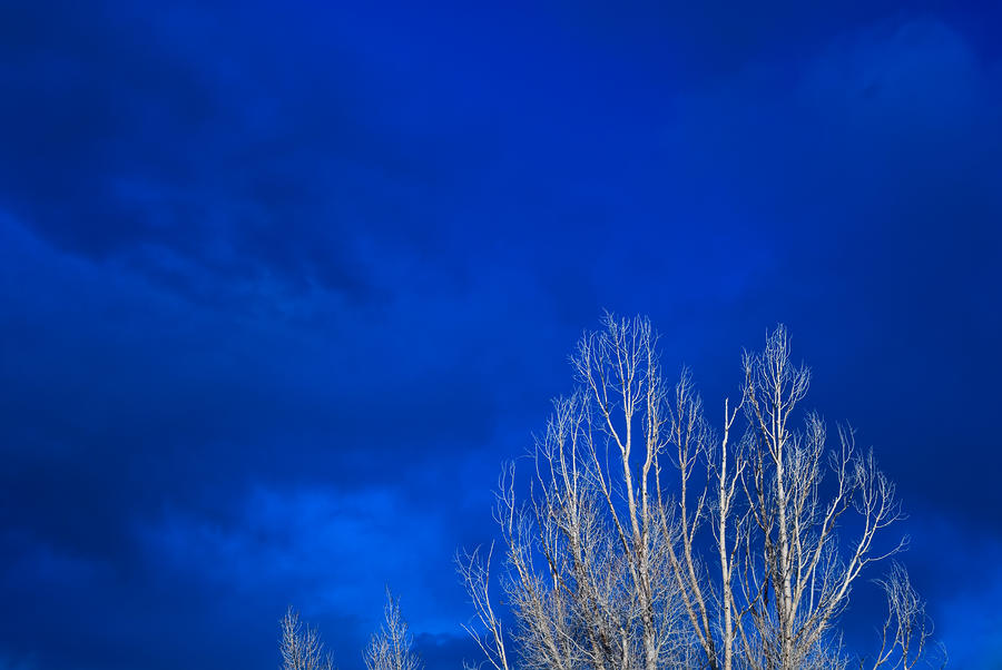 Night Sky Photograph  - Night Sky Fine Art Print
