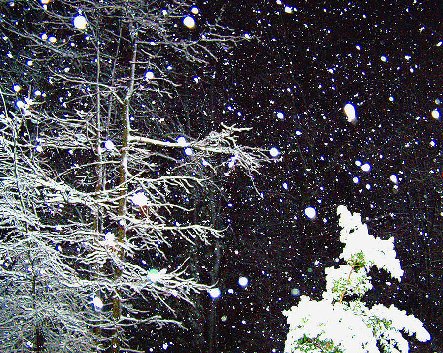 Night Snow Photograph  - Night Snow Fine Art Print