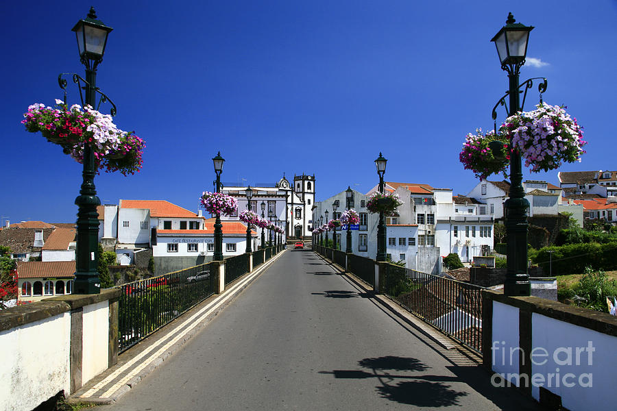Nordeste - Azores Islands Photograph  - Nordeste - Azores Islands Fine Art Print