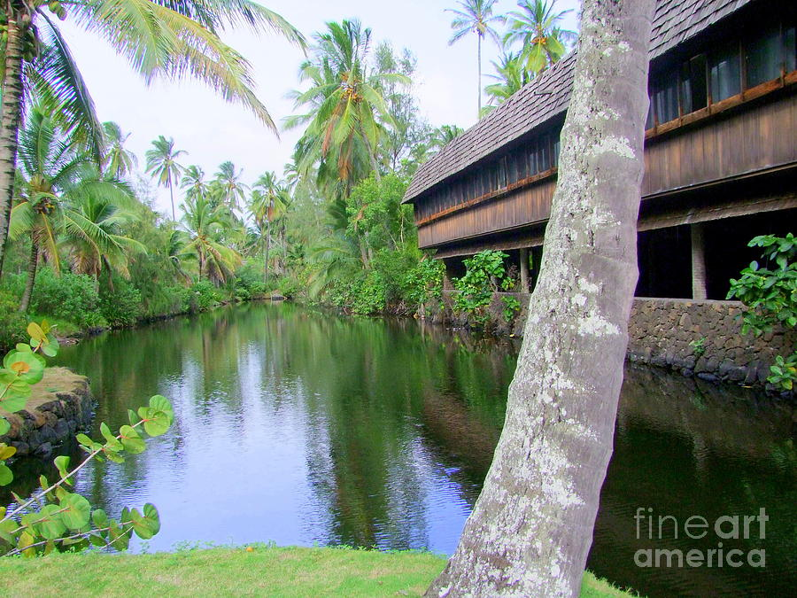 North Wing Lagoon - Coco Palms Series 40 Photograph