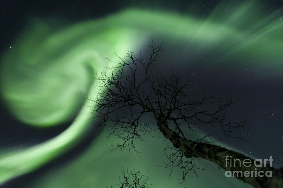Northern Lights In The Arctic Photograph