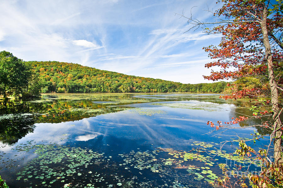 Northern New Jersey Lake Photograph