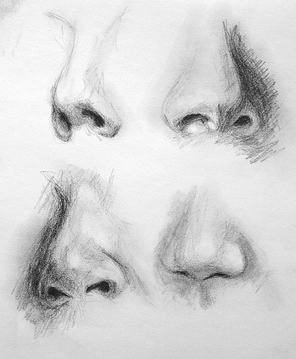 Drawing noses in charcoal everything pinterest draw drawing noses in charcoal ccuart Image collections