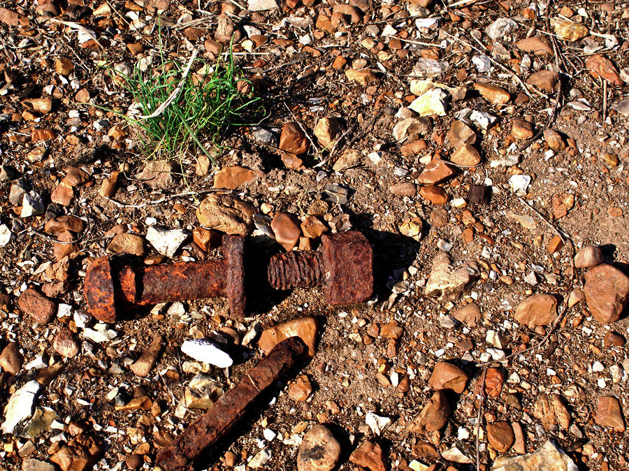 Nuts And Bolts Rusted Photograph