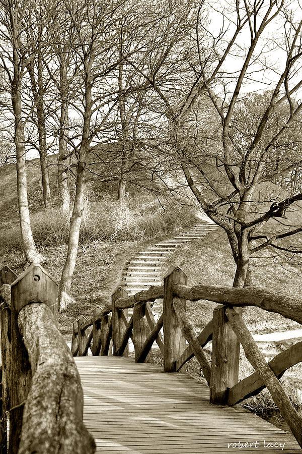 Nyborg Footbridge Photograph