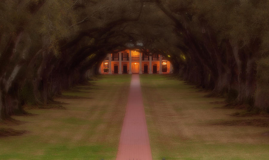 Oak Alley Plantation Photograph