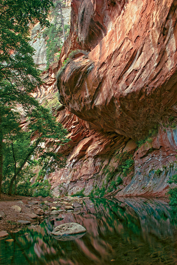 Oak Creek Canyon Walls Photograph  - Oak Creek Canyon Walls Fine Art Print