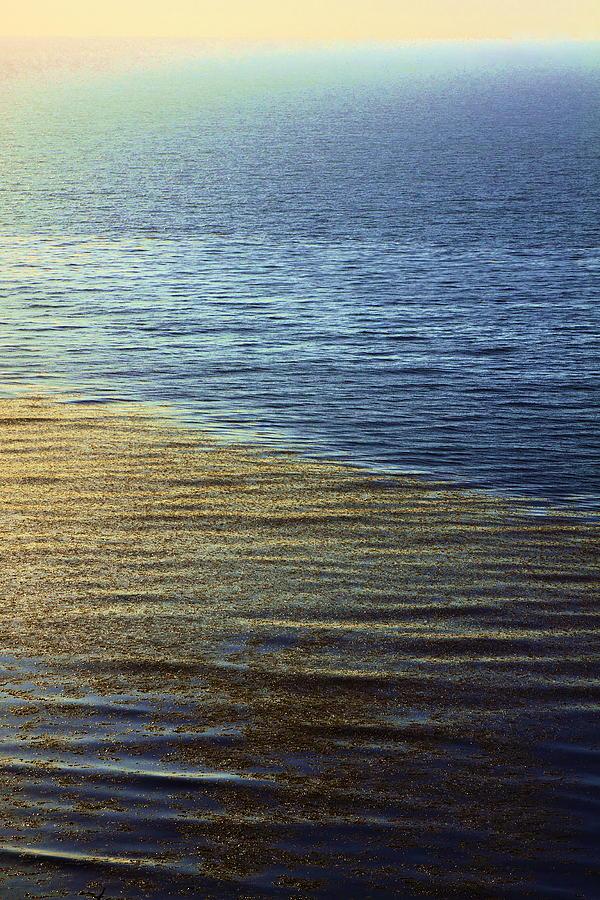 Ocean Spring Photograph