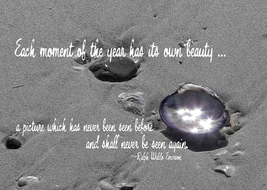 October Sparkle Quote Photograph  - October Sparkle Quote Fine Art Print