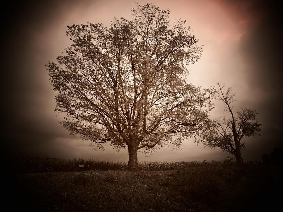 October Storm Photograph
