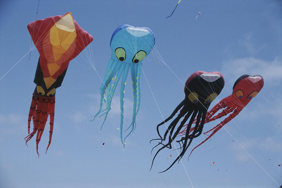 Octopus And Squid-shaped Kites Fly Photograph  - Octopus And Squid-shaped Kites Fly Fine Art Print