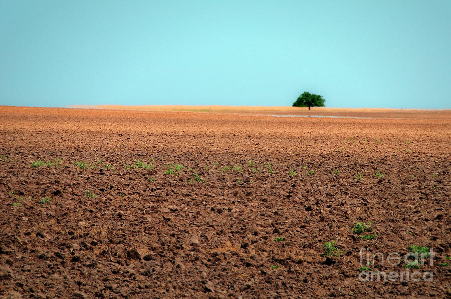 Oklahoma Drought Mirage Photograph