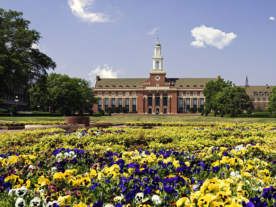 Oklahoma State Flowers Bloom  Photograph