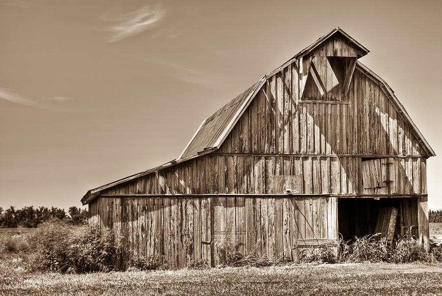 Old Barn In Sepia Photograph