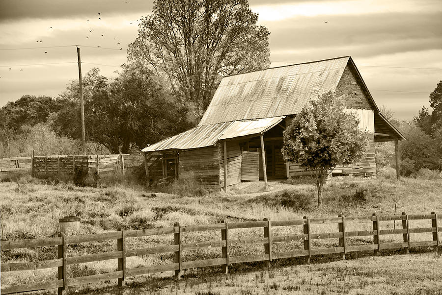 Abandoned Photograph - Old Barn Sepia Tint by Susan Leggett