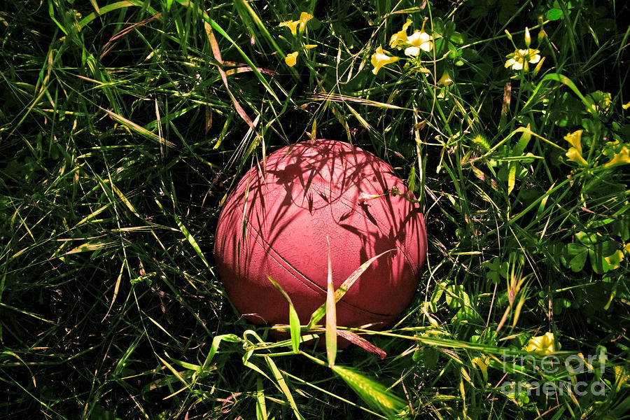 Old Basketball In The Grass Photograph