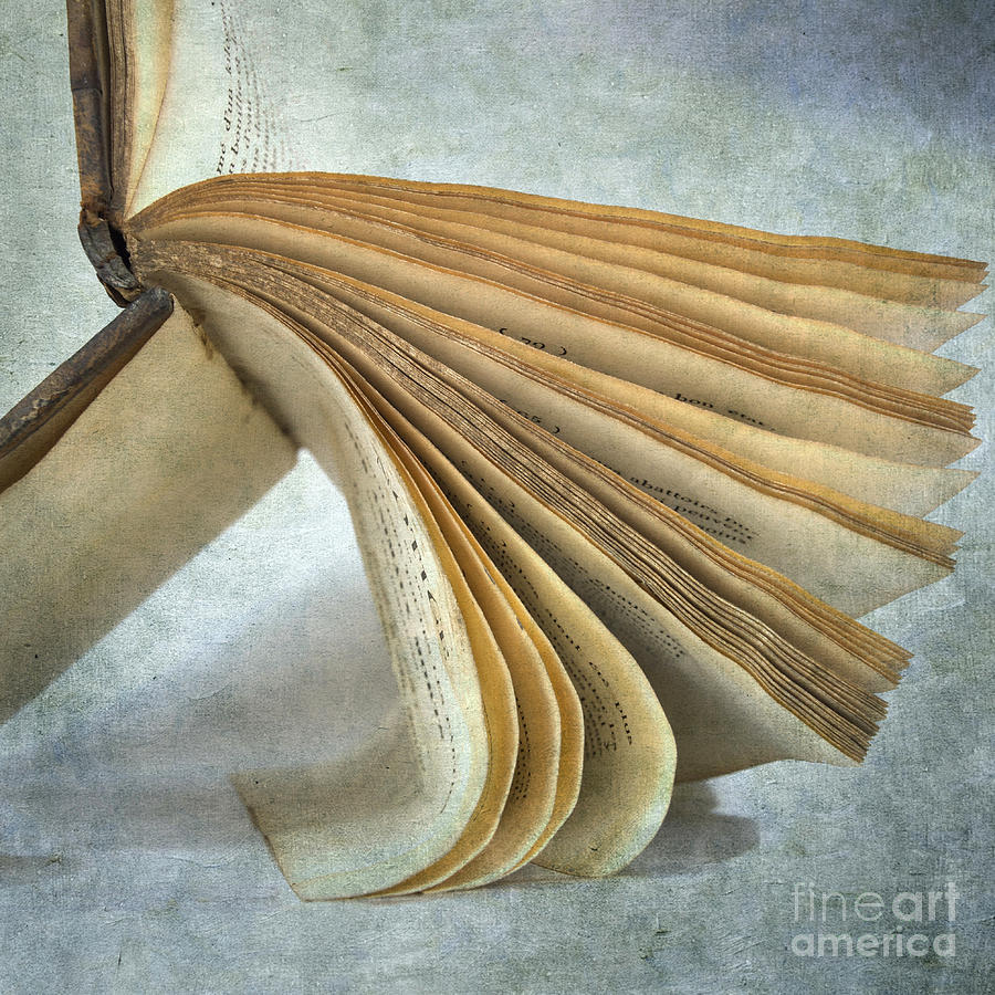 Old Book Photograph  - Old Book Fine Art Print
