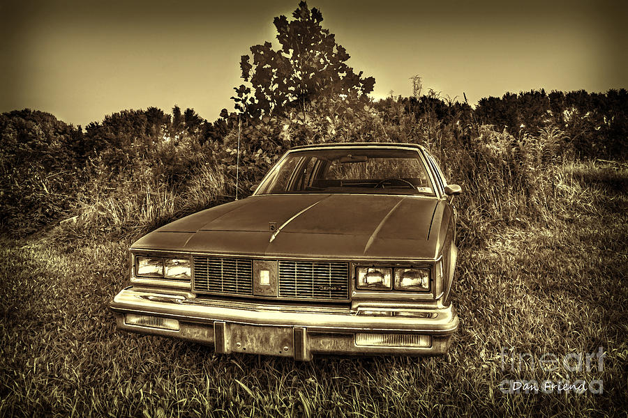 Old Car In Field Photograph
