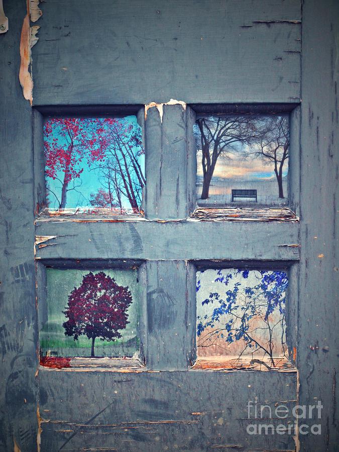 Old Doorways Photograph