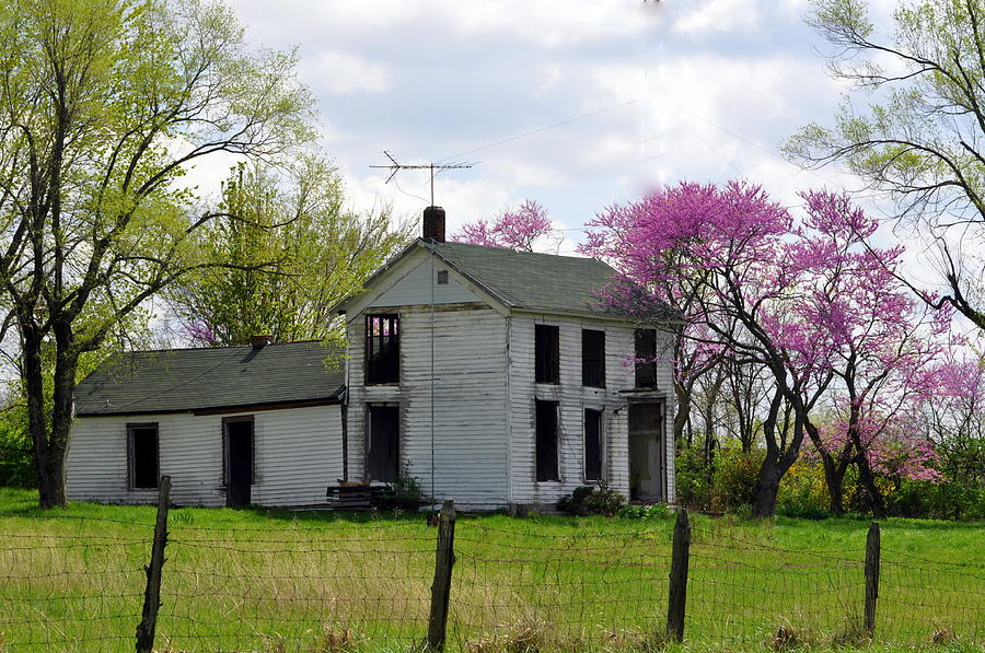 Old Farmstead Photograph