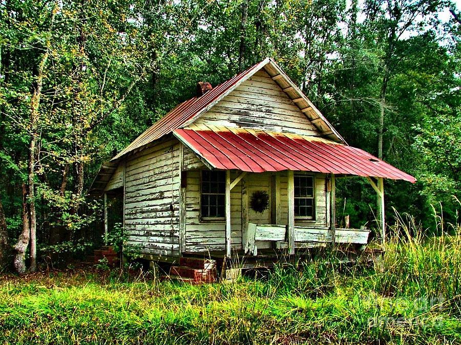 Old Florida Vi Photograph By Julie Dant
