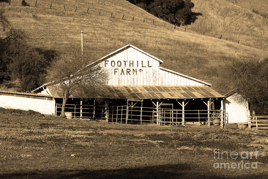 Old Foothill Farms In Small Town Of Sunol California . 7d10796 . Sepia Photograph  - Old Foothill Farms In Small Town Of Sunol California . 7d10796 . Sepia Fine Art Print