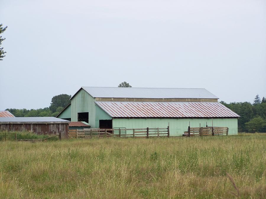 Old Green Barn    Washington State Photograph  - Old Green Barn    Washington State Fine Art Print